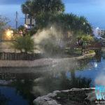 Wild Willys FL Mist Works 2018